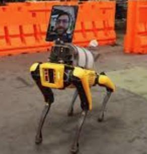 理想新宠物:不能管家的AI机器狗不是好宠物?